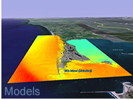 Image of computer modeled tsunami inundation